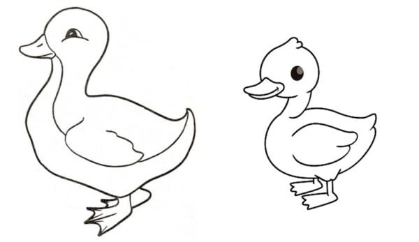 desenhos de pato para imprimir e pintar
