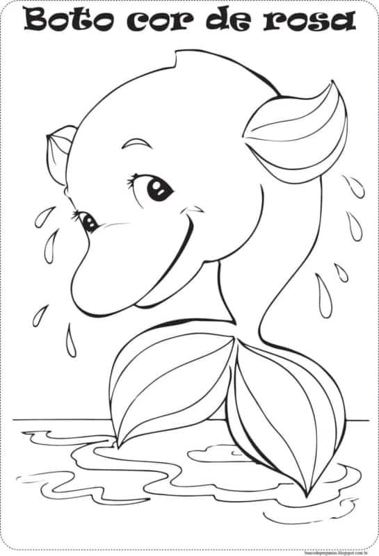 desenho do Boto Cor de Rosa para imprimir gratis