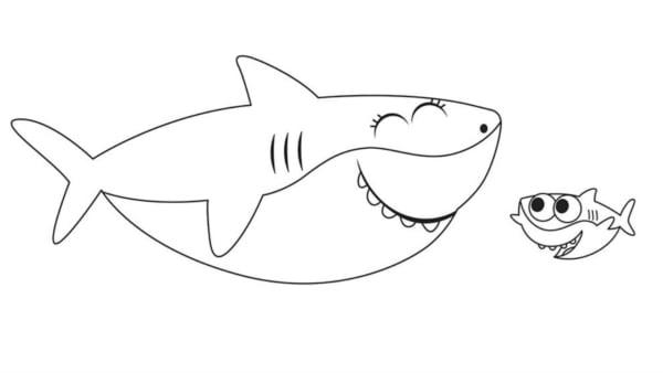 atividade baby shark para pintar gratis