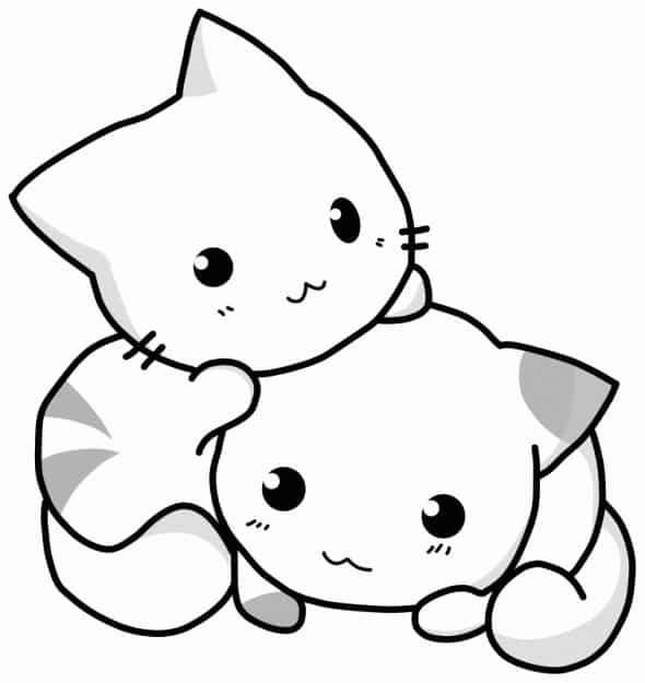 gatinhos para colorir