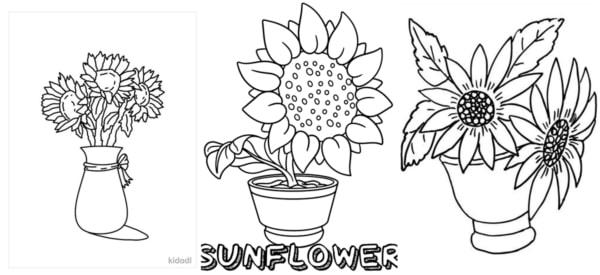 desenhos de girassol em vaso para colorir