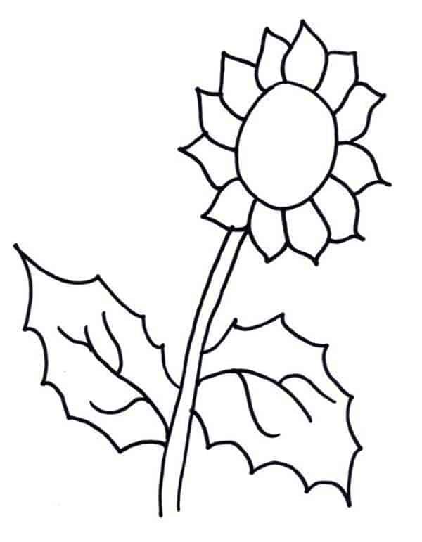 desenho de girassol para imprimir gratis