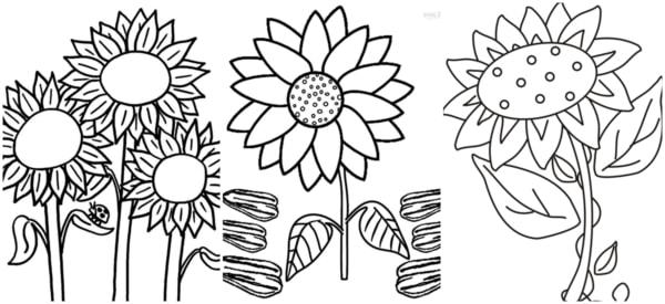 desenhos simples de girassol para pintar